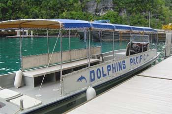 Neco Boat - Courtesy of www.dolphinspacific.com